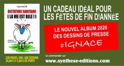 CHN FLYER SITE VENTE copie.jpg